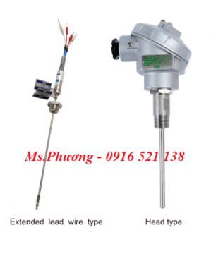 Cảm biến nhiệt độ, Nhiệt điện trở (RTD) wise model R200