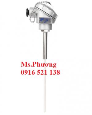 Cảm biến nhiệt độ, Can nhiệt, Cặp nhiệt điện wise model R700