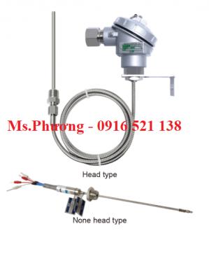 Cảm biến nhiệt độ, Can nhiệt, Nhiệt điện trở (RTD) wise model R300