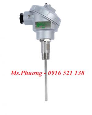 Cảm biến nhiệt độ, Nhiệt điện trở (RTD) wise model R210