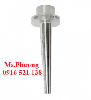 Thermowell (Ống bảo vệ) Wise A640 series
